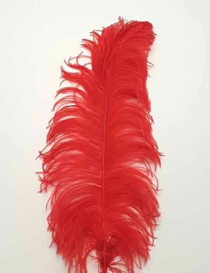 Ostrich feather 60 cm