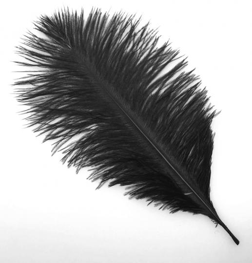 Ostrich feathers - 25-30 cm - price by one