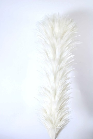 White or red plume 43 cm